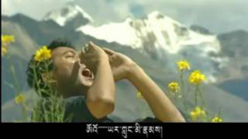 Tibetan song 2011 Phayul Yarlung by Dorjee Phuntsok