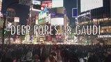 DEEP FOREST &amp GAUDI TAIYO
