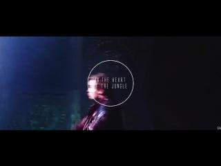 Marvel - follow me into the jungle