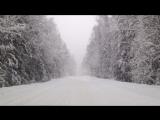 Такого снегопад давно я не видала)