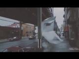 Trailer. Самбо белого мотылька