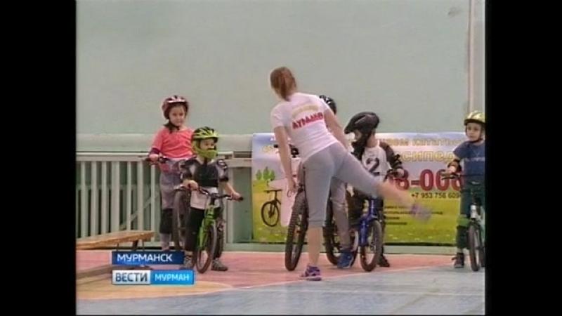 ГТРК Мурман Вести спорт клуб Белые Мишки