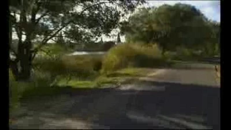 Дальнобойщики 8 серия Лебедянго