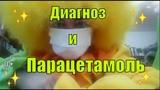 Вирус и парацетамоль. Смешные видео. Гришка жжет