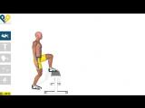 Упражнение на ноги Упражнения для ягодиц- Step Ups