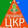 """Центр культурного развития """"Вертикаль"""" г. Пущино"""