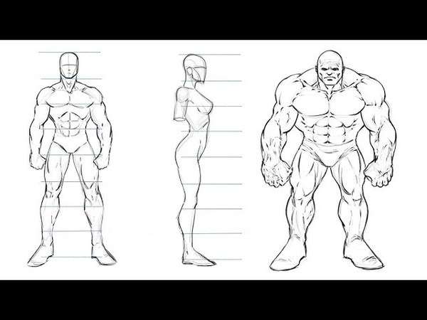 How to Draw Comic Book Characters Studying Proportions