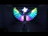 Пиксельные перьевые крылья