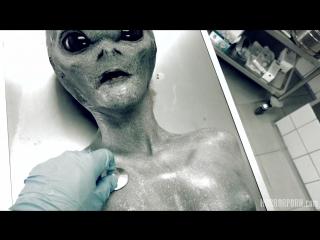 Roswell UFO  (Porn, POV, bdsm, cosplay, fetish, horror, hardcore)