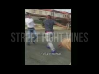 Street fight vines #354