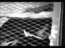 Считалка Стихи А Витухновская музыка Александр Пастернак видео Тэцуо железный человек