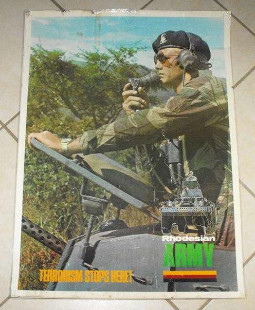 T7AaMxiqaLg.jpg