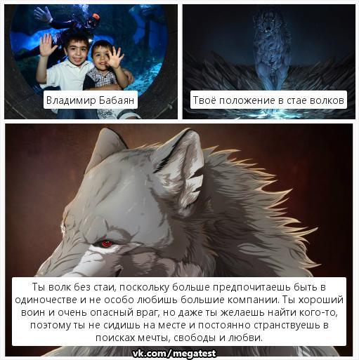 тесты про волков в картинках любви разочарования, история