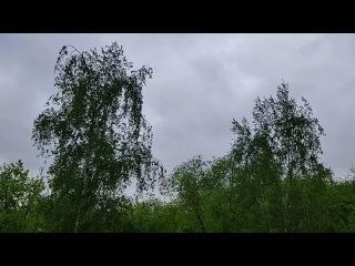 Утро Волшебника 21-05-2017 - ПРОГНОЗ