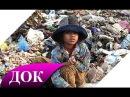 Экология и загрязнение планеты. Влияние загрязнений на человека. Документальный фильм