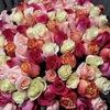 Белая роза- живые цветы