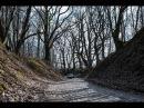 Руины замка Бальга собираются превратить в ландшафтный парк