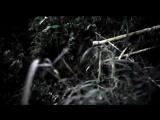 Saphir - Splinters From Trilein Drive Feat. KURO SHAE