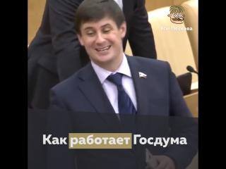 Как работает Госдума