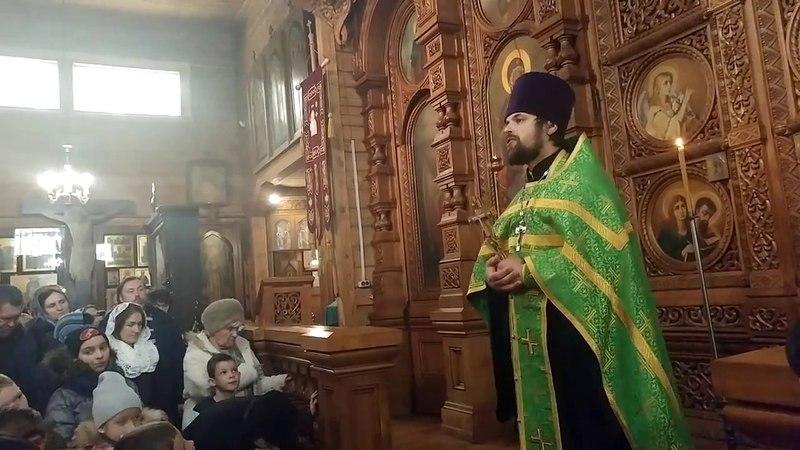 Проповедь иерея Сергия Чекоданова в праздник Входа Господня в Иерусалим