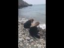 Личное видео ›› публикация Ребекки Мюррей в Instagram Stories