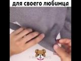 Домик для котейки за 5 минут