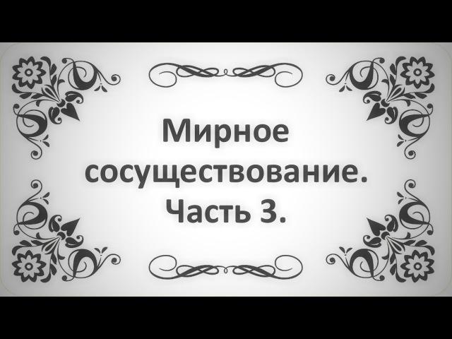 40. Мирное сосуществование. Часть 3. (Ключ Счастья)    Абу Яхья Крымский