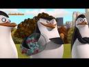 Пингвины из Мадагаскара Шарики за ролики