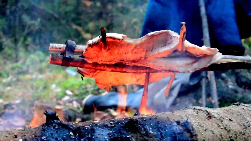 Дикая кухня - ЖАРЕНАЯ ЩУКА НА ОГНЕ В РАСЩЕПЕ ¦ Cooking Fish Bushcraft Style
