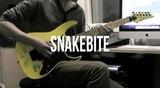 Darryl Syms - Snakebite Guitar Solo (Racer X Cover)