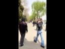 Инстаграм-история Джесси Джо Старк (31.03.18)