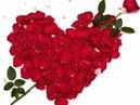 Алая роза   Виктор Королев!!!