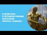 В Петергофе в тестовом режиме запустили фонтан Самсон