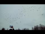 Белые шары в память о жертвах в ТЦ