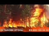 Спаси пермские леса от пожара