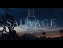 Sauvage the magic hour