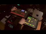 Anton Anru Coldplay through Korg Electribe's audio in (with Radias, Ableton, Launchpad)