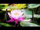 Huawei mate 10: FULLVIEW ДИСПЛЕЙ