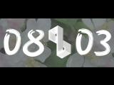 Slwdnc x Minibar