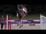 Конкурс от equnews.ru и Сибирской конной мануфактуры