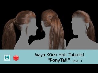 CGLYO - Realistic Ponytail HairStyle with XGen & Redshift - Part01