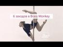 "6 заходов в ""Brass Monkey"" | Учим с Kat's"