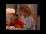 Alf Quote Season 3  Episode 1_Логично