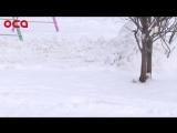 Горячая линия: Как правильно чистить снег и сбивать сосульки управляющим компаниям