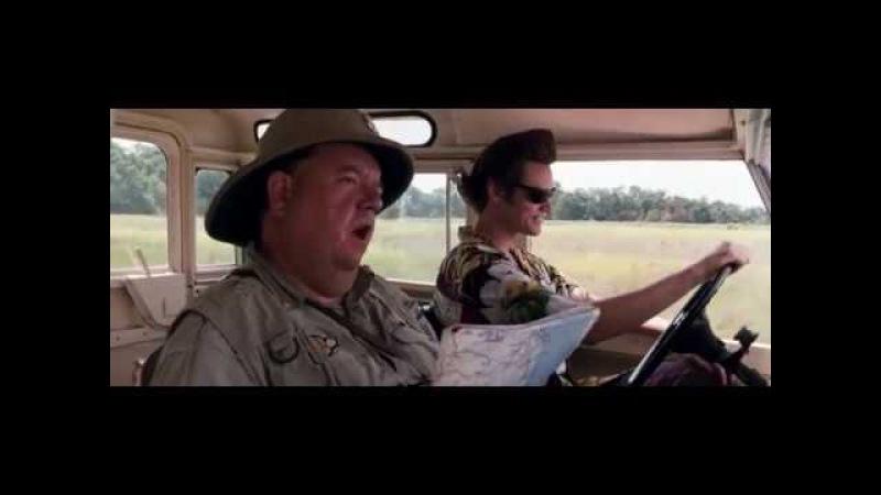 Поездка по сафари Эйс Вентура 2 Когда зовет природа