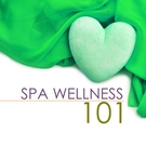 Обложка Soothing Dreams (Spa Sounds with Birds Chirping) - Wellness N Wellness