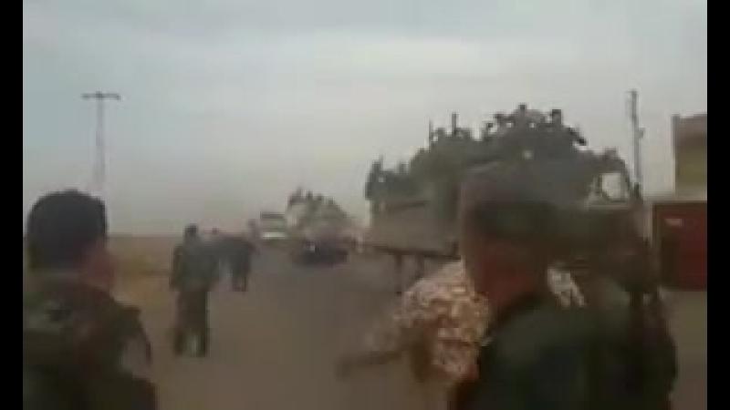 Силы Тигра генераля Сухейля прибыли в провинцию Дараа в рамках подготовки к операции на юго западе Сирии