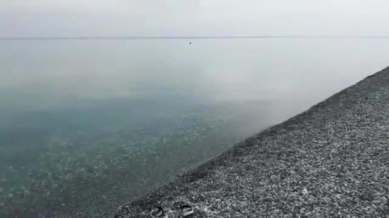 Какое море.ммм Пицунда