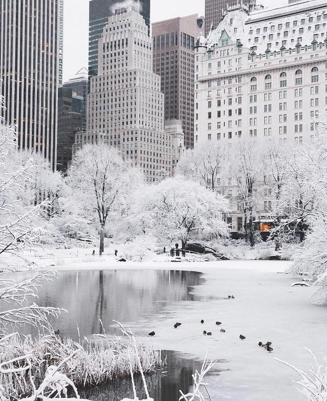 30 лучших фото рождественских Нью-Йорка, Парижа, Стокгольма и других красивых городов, изображение №4