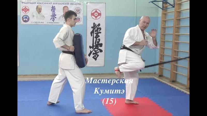 МАСТЕРСКАЯ КУМИТЭ КЁКУСИНКАЙ (15)